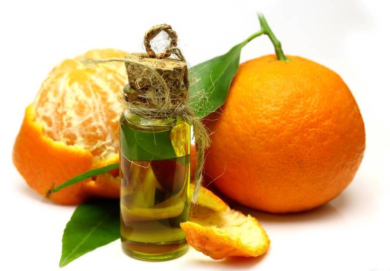 狗不能吃柑橘油萃取物